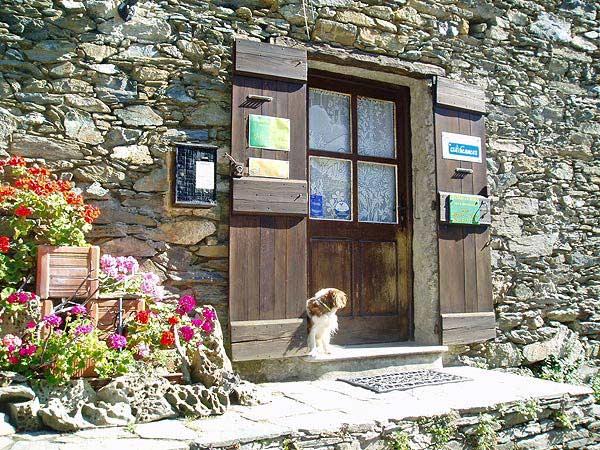- Chambre d'hôtes - Santa-Maria-di-Lota