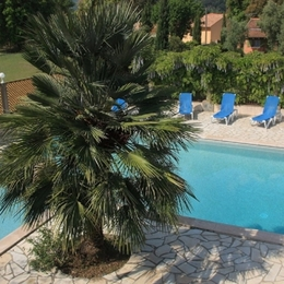 La piscine - Location de vacances - Sorbo-Ocagnano