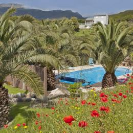 Piscine parmi les palmiers - Location de vacances - Sisco