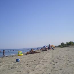 La plage - Location de vacances - Poggio-Mezzana