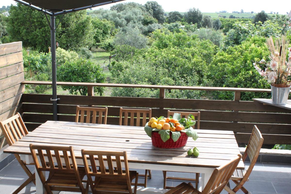 Terrasse attenante - Location de vacances - Ghisonaccia