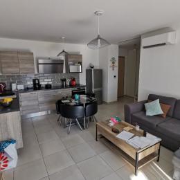 séjour/salon/cuisine - Location de vacances - San-Nicolao
