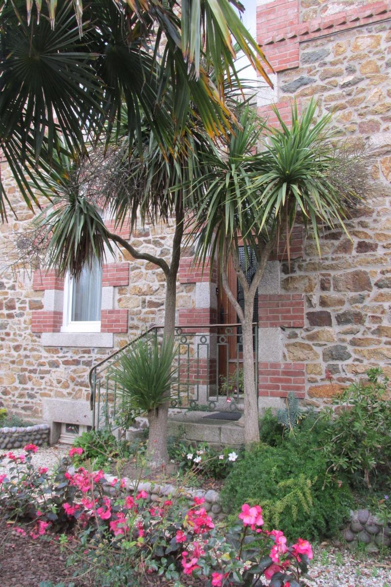 Cour fleurie - Chambre d'hôtes - Pléneuf-Val-André