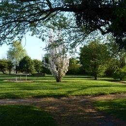 Résidence de la Carquois vue du parc - Location de vacances - Fréhel
