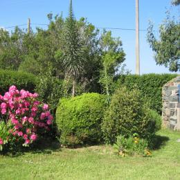 un coin du jardin - Location de vacances - Plougrescant
