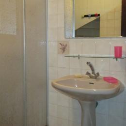 Salle d'eau avec douche et lavabo au RDC - Location de vacances - Paimpol