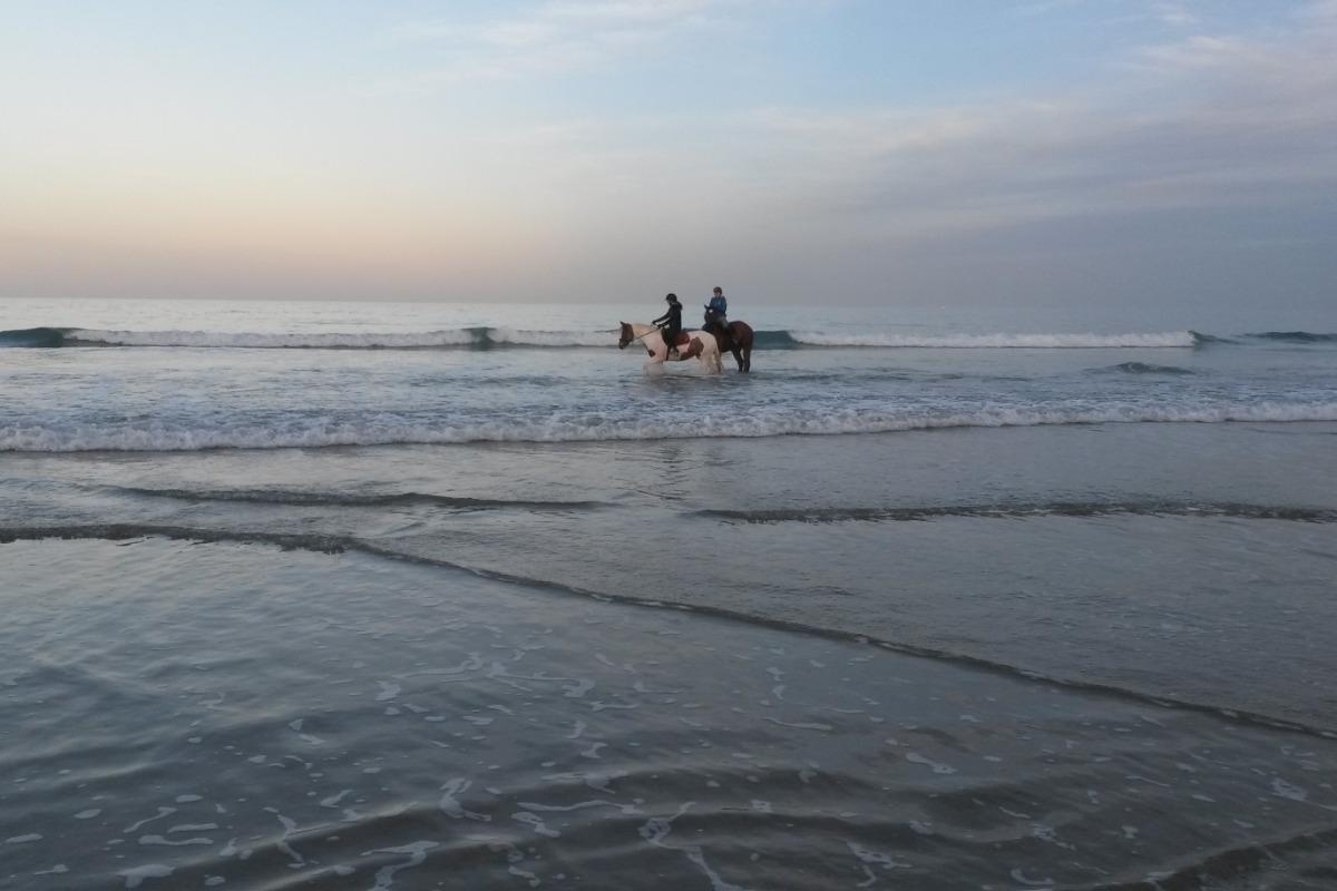 cavaliers sur la plage du Palus