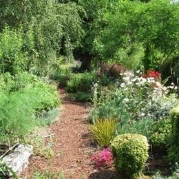 Une allée dans le jardin d'agrément - Chambre d'hôtes - Jugon-les-Lacs