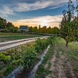 Corps de ferme du Château avec nos 3 gîtes  - Location de vacances - Pléhédel