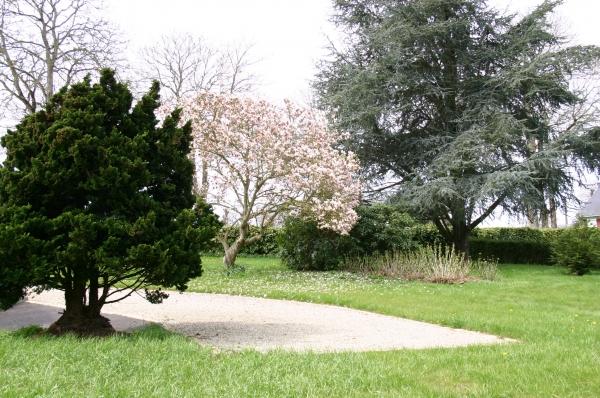 la pelouse arborée - Location de vacances - Broons
