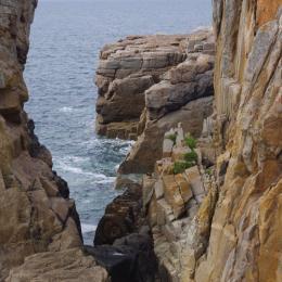nos rochers - Chambre d'hôtes - Paimpol
