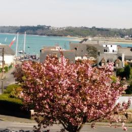 Location Perros-Guirec, vue depuis la maison - Location de vacances - Perros-Guirec