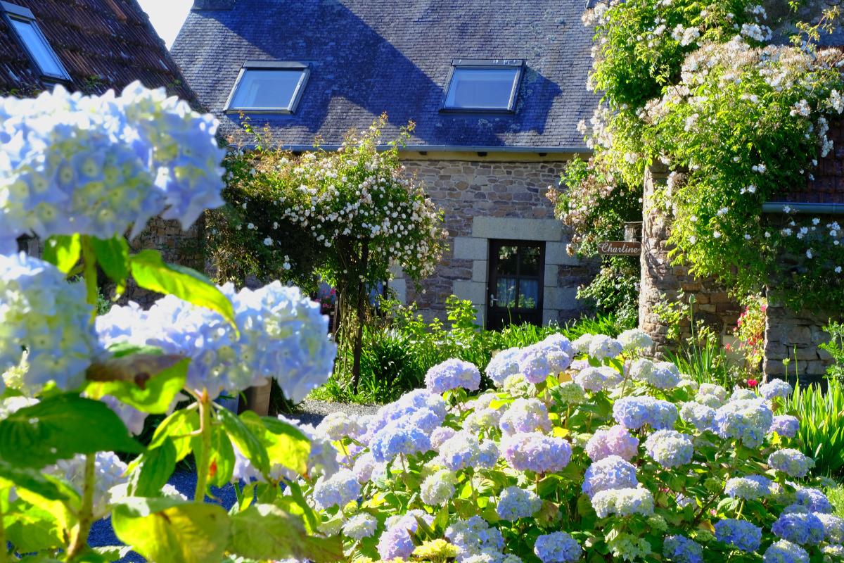 La maison  Mayline  et son écrin de fleurs. - Location de vacances - Paimpol