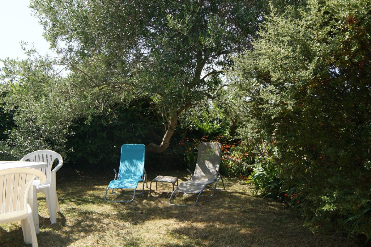 jardin ombragé et sans vis-à-vis  - Location de vacances - Plougrescant