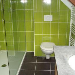 DUCLUT, location Pludual, salle d'eau avec douche et WC - Location de vacances - Pludual