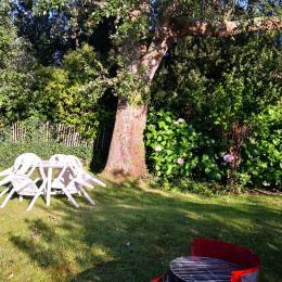 Partie du jardin privatisée, ensoleillement le soir en été - Location de vacances - Trévou-Tréguignec