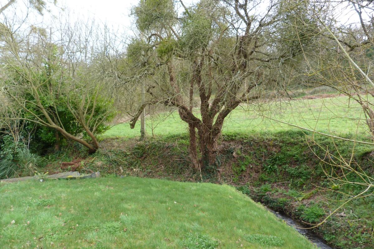 Le Bâchelet, petit ruisseau qui longe le terrain - Location de vacances - Plérin