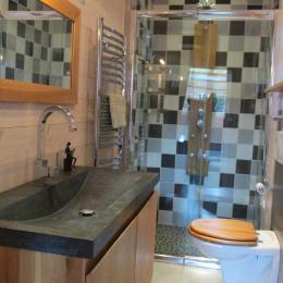 La salle d'eau-WC privative du RDC - Location de vacances - Brusvily
