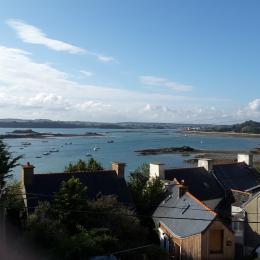 le petit jardin devant le gîte - Location de vacances - Ploubazlanec