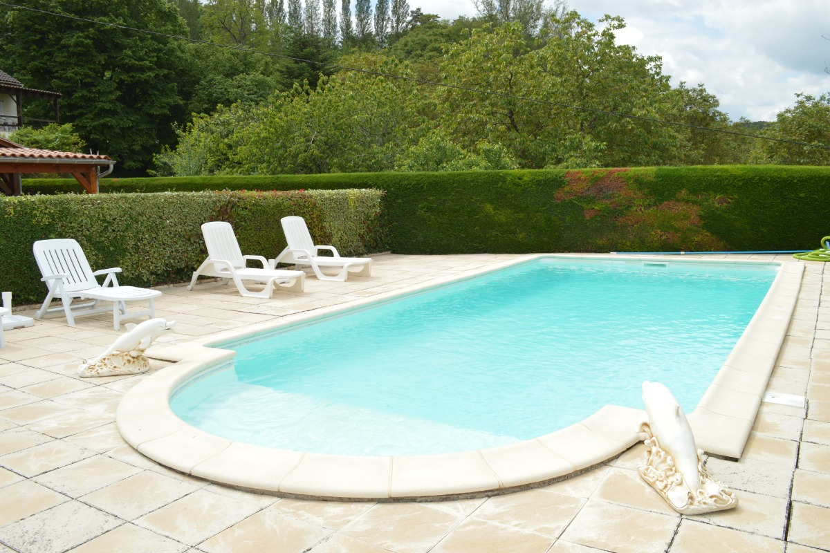 PISCINE 8M X 4M - Location de vacances - Sarlat-la-Canéda
