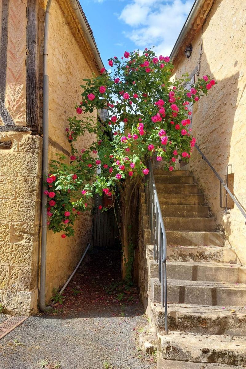 Escalier acces au blaconnet - Location de vacances - Lanquais