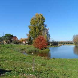 Piscine et parc privé - Location de vacances - Lamonzie-Saint-Martin