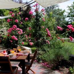 Petit déjeuner sur la terrasse - Chambre d'hôtes - Saint-Michel-de-Montaigne