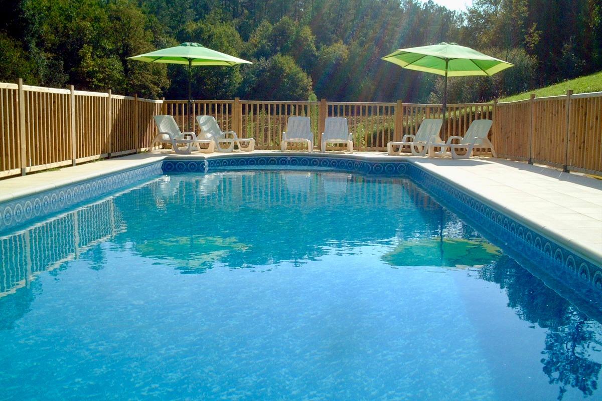 piscine 13.5m x 4.5m au sel - Location de vacances - Proissans