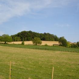 La vue sur la campagne  - Chambre d'hôtes - Saint-Privat-des-Prés