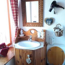 Magnifique petite salle d'eau - Chambre d'hôtes - Mouthe