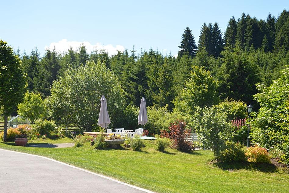 La grande terrasse - Chambre d'hôtes - Fournet-Blancheroche