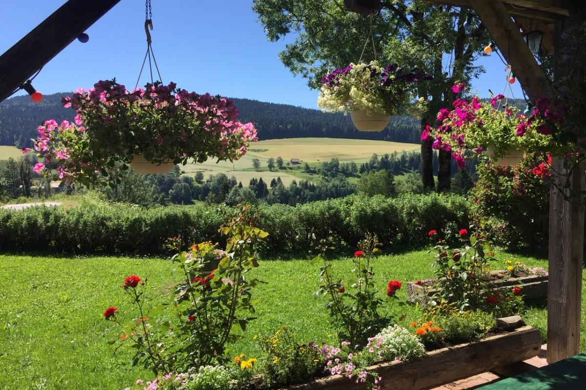 Vue du chalet - Location de vacances - La Cluse-et-Mijoux