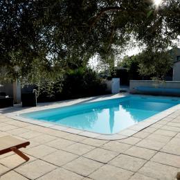 Sous l'olivier, sieste au bord de la piscine - Chambre d'hôtes - Montmeyran