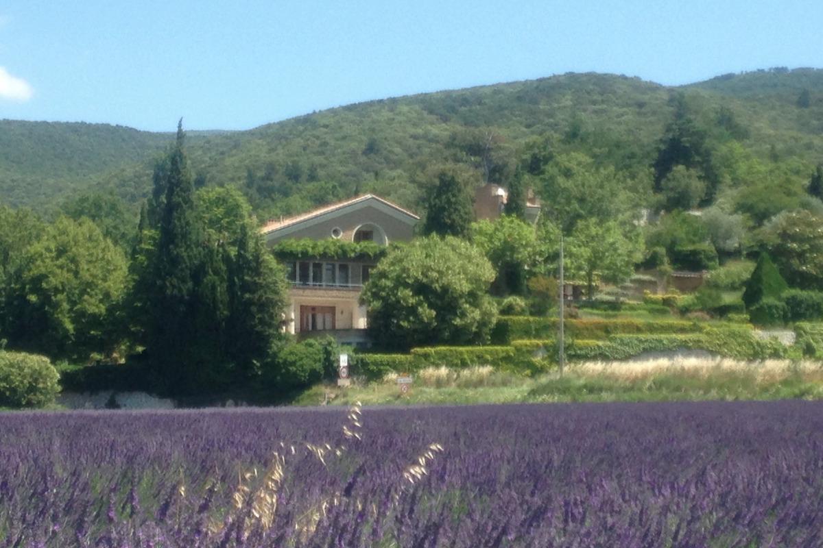 Vue du domaine avec les lavandes - Location de vacances - Le Pègue