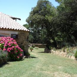 L'entrée du gîte et son terrain - Location de vacances - Suze-la-Rousse