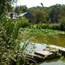 La petite maison de Rose avec vue sur la mare aux canards - Location de vacances - Flancourt-Catelon