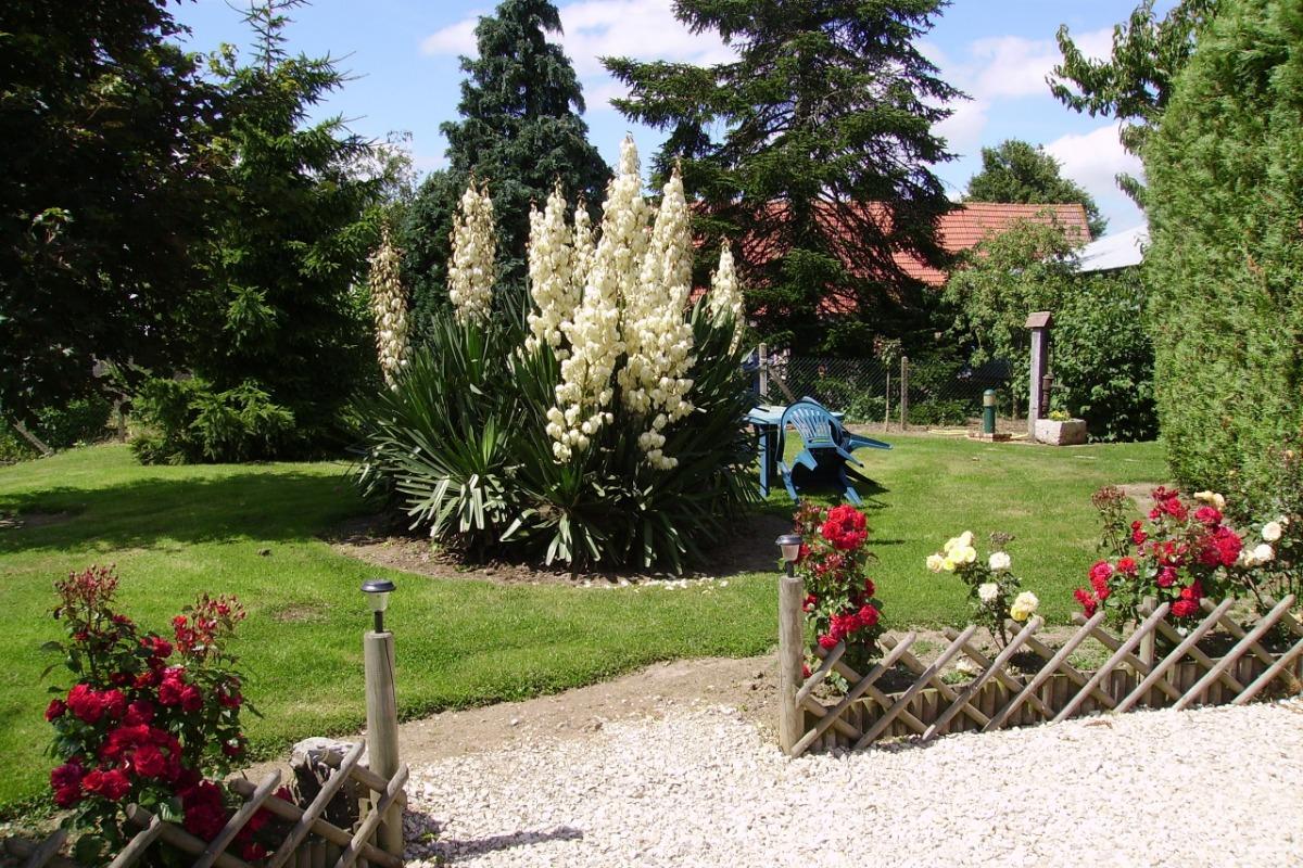 espace extérieur pour votre détente - Location de vacances - Ermenonville-la-Grande