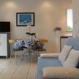 salon séjour - Location de vacances - Roscoff