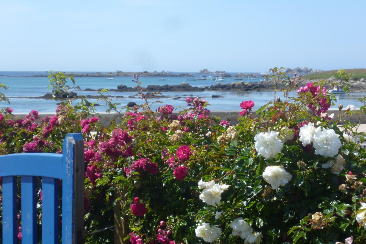 Vue mer de la maison - Location de vacances - Plouguerneau