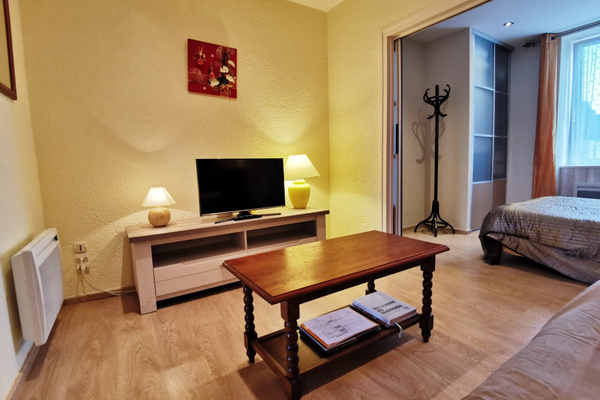Salon TV  - Location de vacances - Roscoff