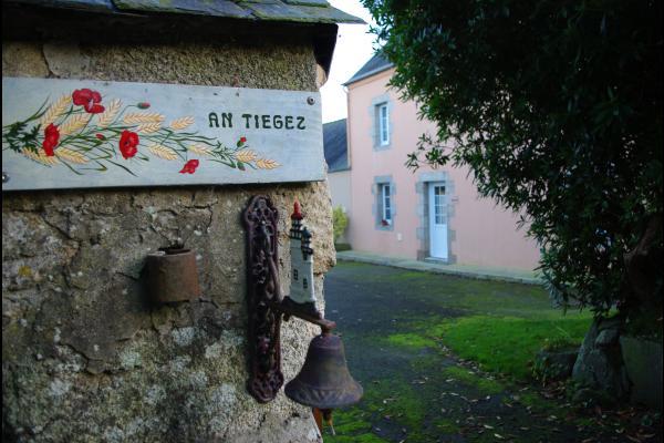 Coquelicots et épis de blé d'accueil - Location de vacances - Lannilis