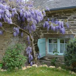 Coté jardin - Chambre d'hôtes - Arzano