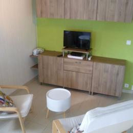 Salon avec TV, internet WIFI - Location de vacances - Locmaria-Plouzané