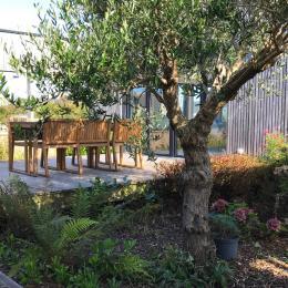Le patio, à l'ombre de l'olivier - Location de vacances - Santec