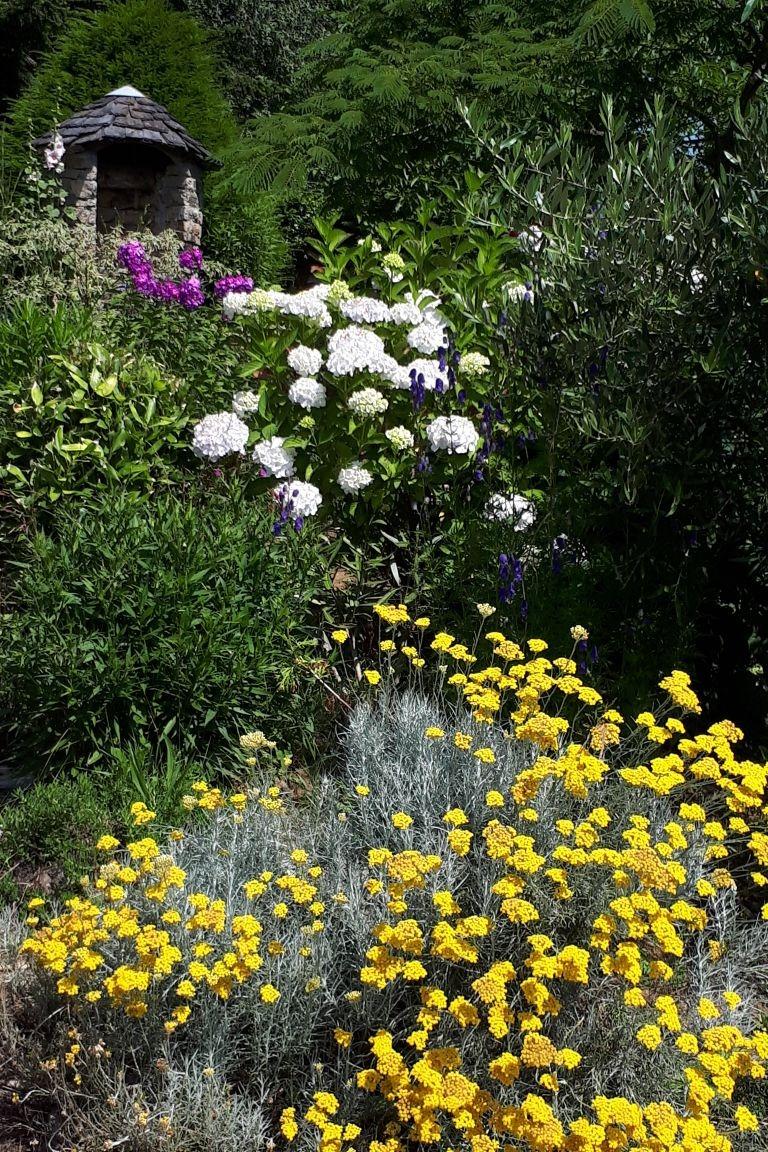 grand jardin fleuri - Location de vacances - Berrien
