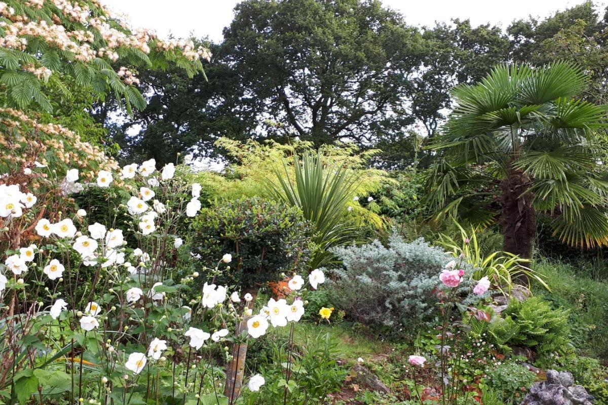 jardin - Location de vacances - Berrien
