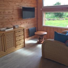 Salon avec TV - Location de vacances - Goulven
