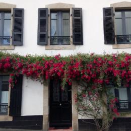 - Chambre d'hôtes - Pont-Croix