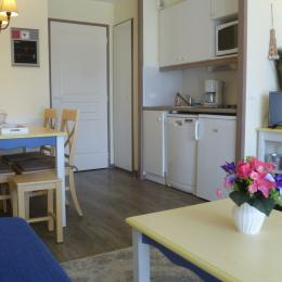 pièce de vie toute équipée avec possibilité de 2 couchages 1 pers dans les canapés du salon - Location de vacances - Douarnenez