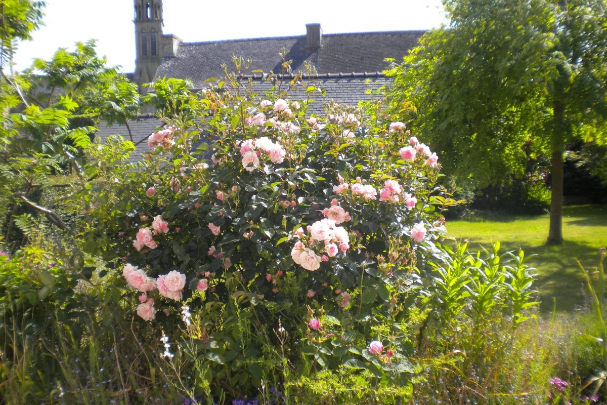 Jardin devant la maison - Location de vacances - Plouénan